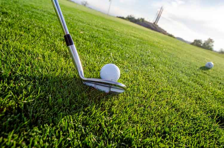 the women golfers leading the way in sa